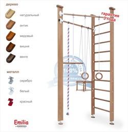 "Karussell ""Emilia"" спортивно-игровой комплекс"